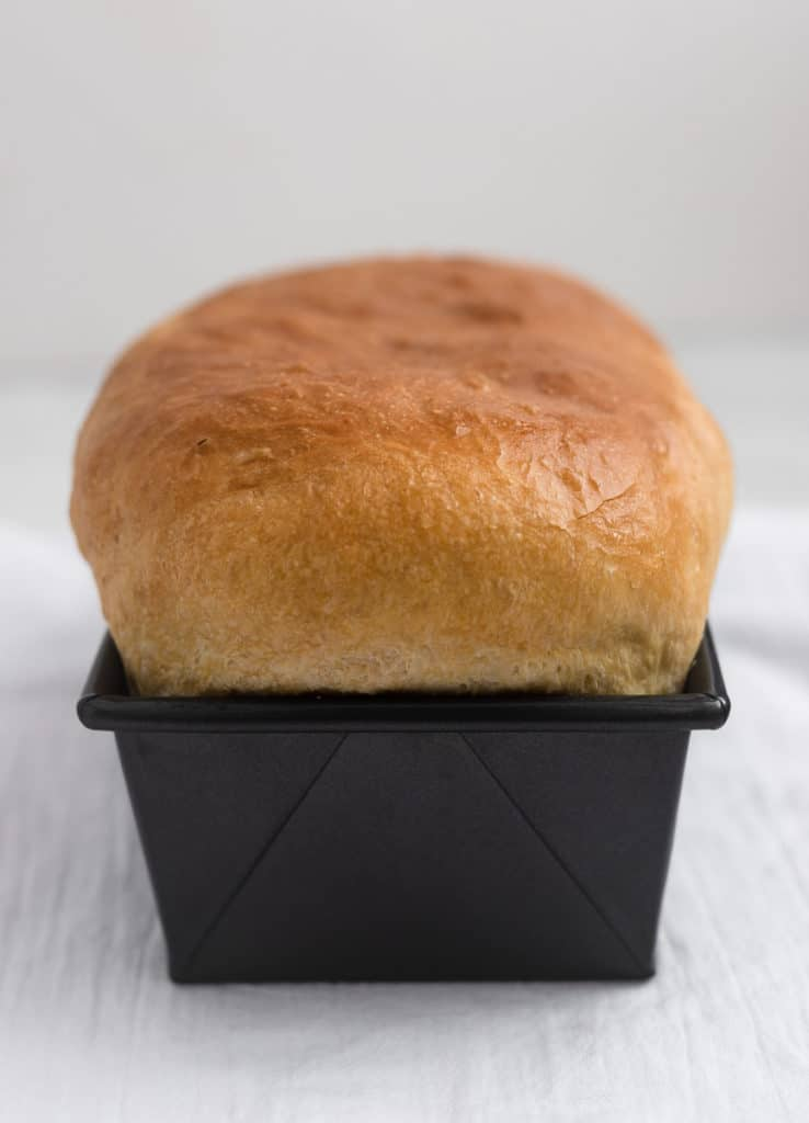 Freshly baked loaf of white sandwich bread in loaf pan.